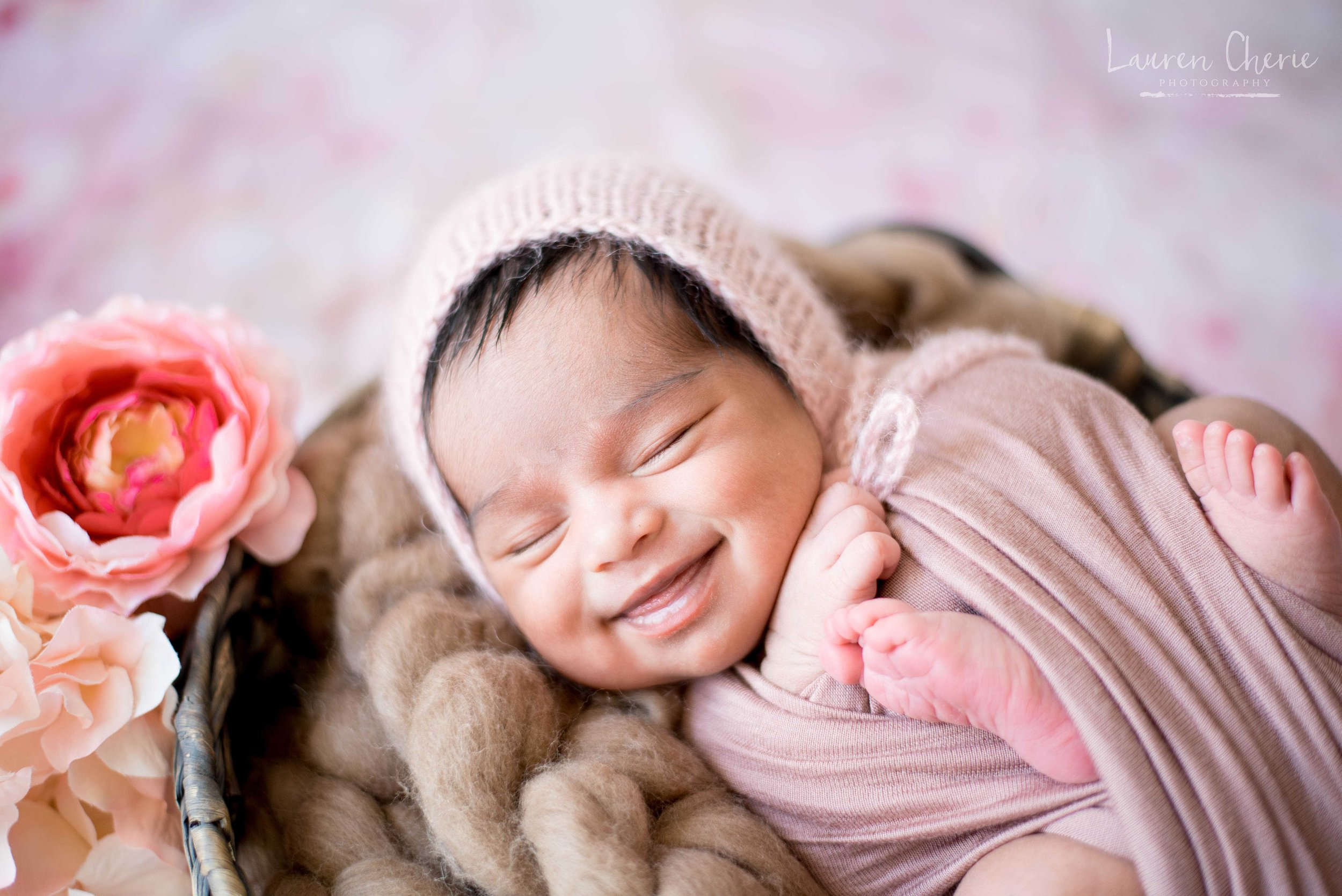 best newborn photographer in albuquerque