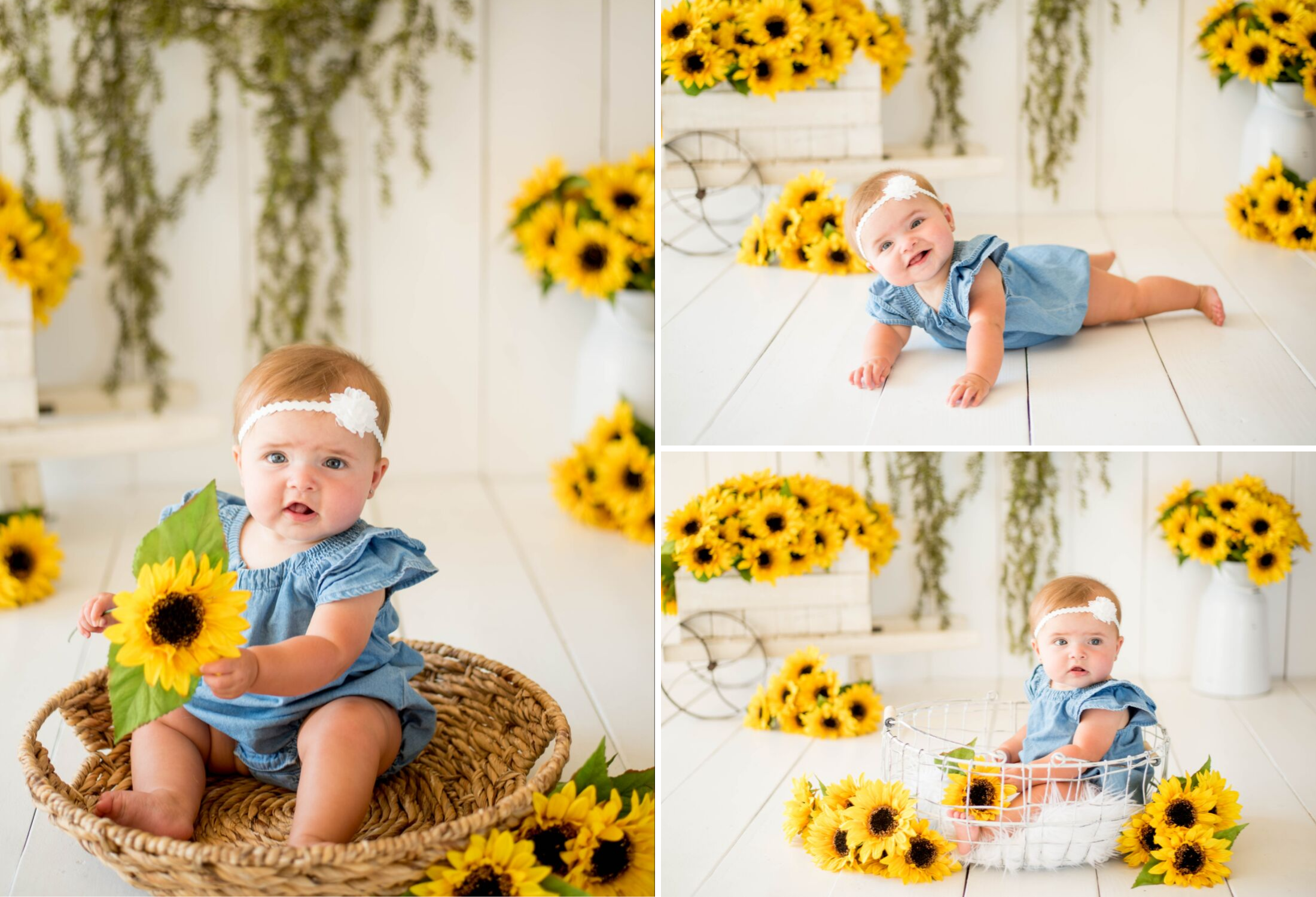 Spring Baby Photo Session