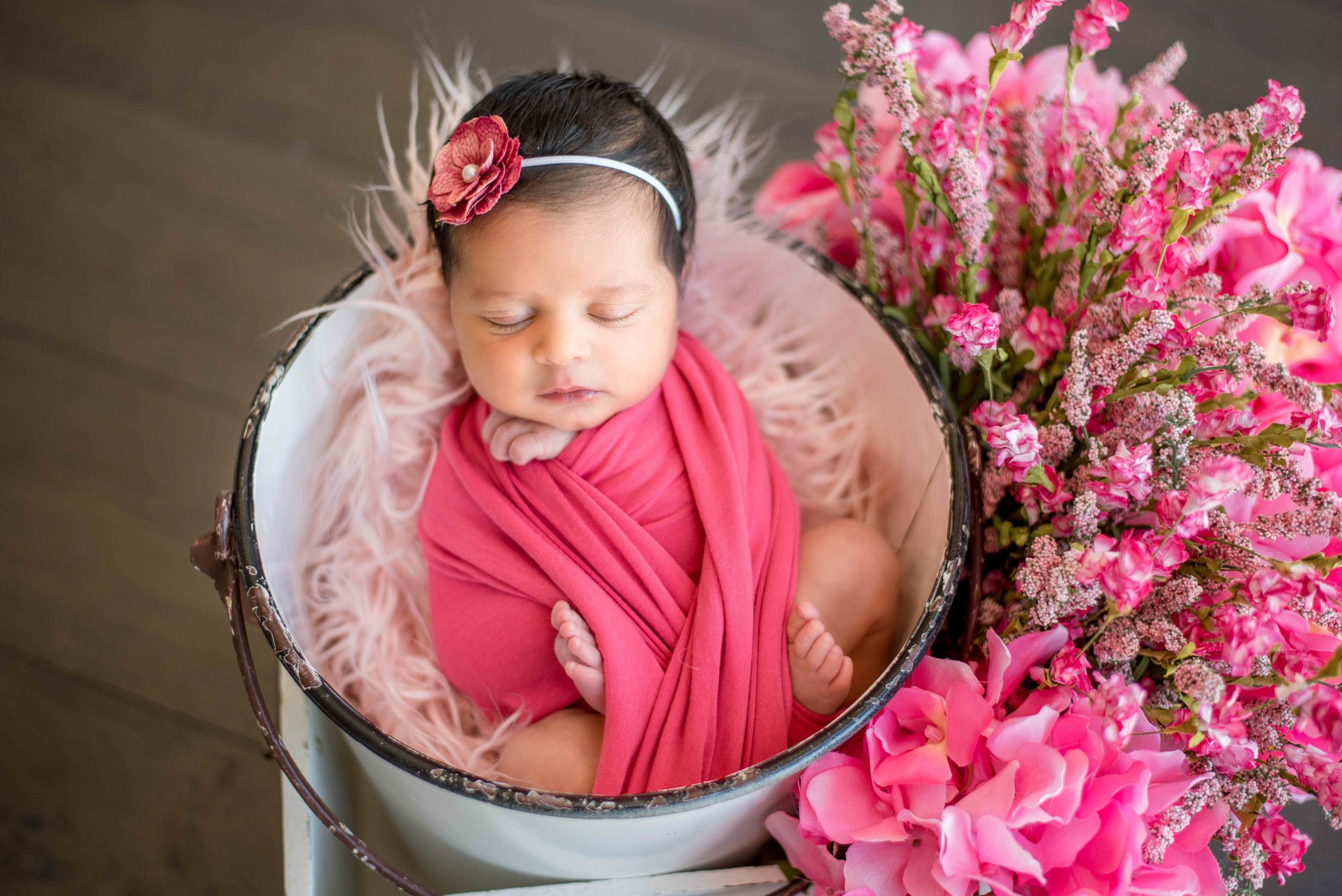santa fe newborn photography