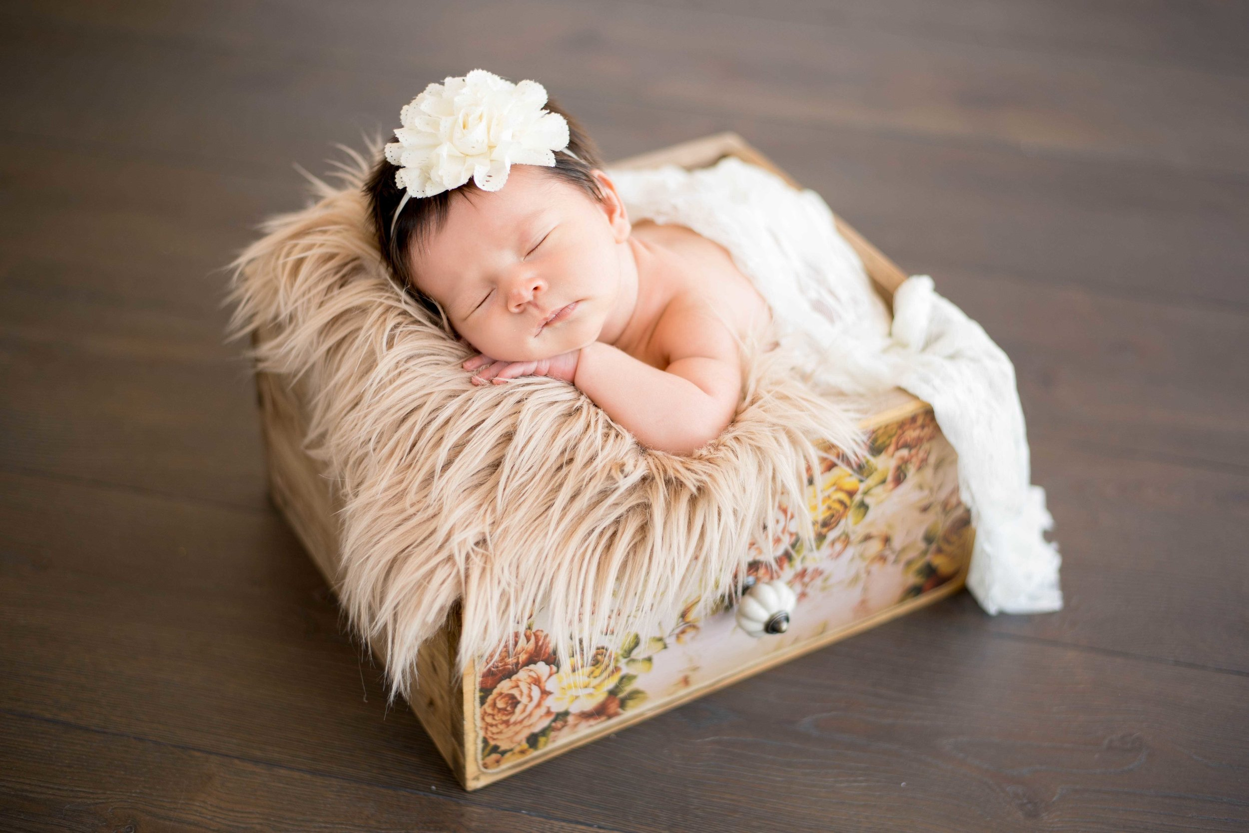 Newborn Princess Photography