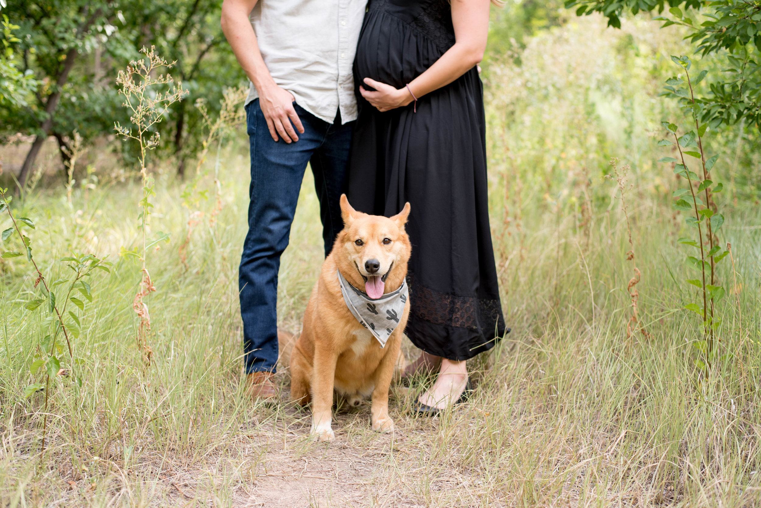 Maternity Photography Albuquerque