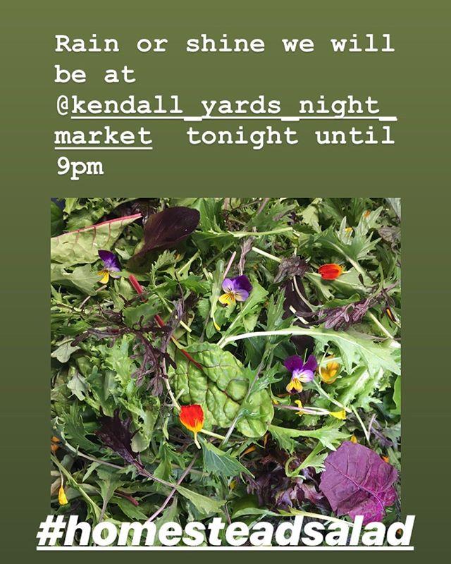 Homestead Salad is looking great this week! Find us tonight at the @kendall_yards_night_market . . . #homesteadsalad #aceofspadesfarm #belocal #flavorbeautyhealth #farmersmarket #spokane #eatlocal #shoplocal