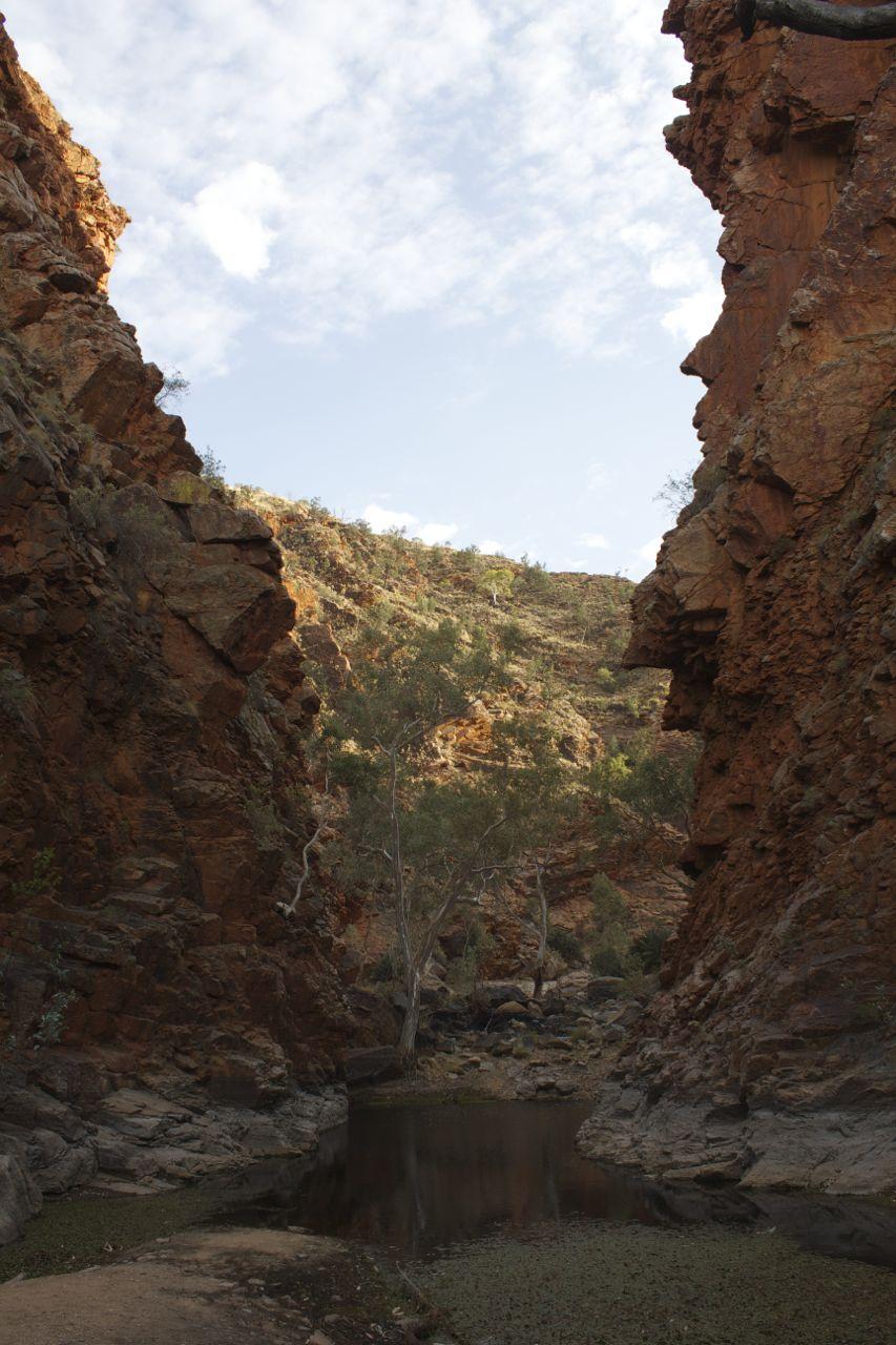 Serpentine Gorge, West MacDonnell Ranges, NT