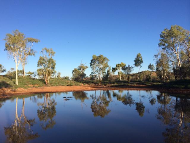 Temporary waterhole, Alice Springs, NT