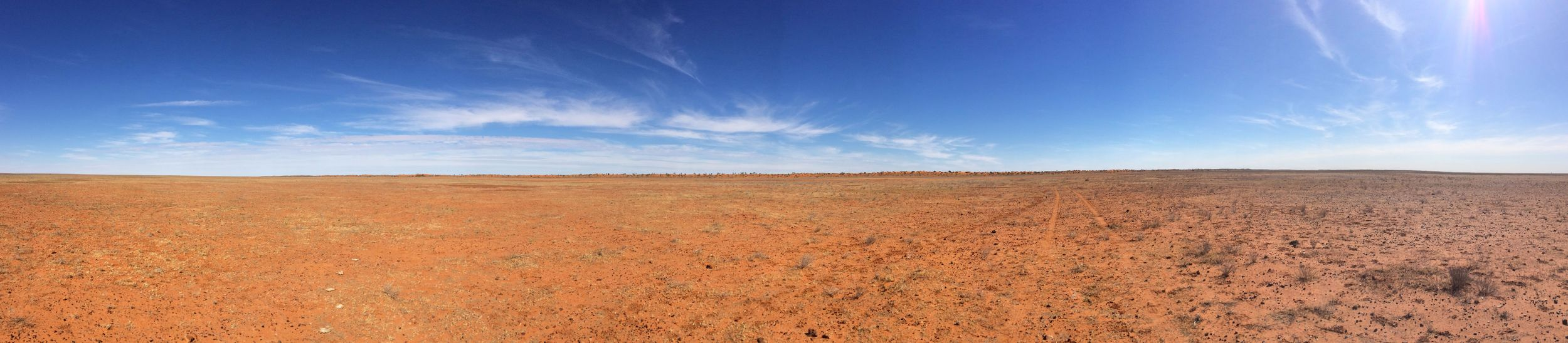 Expanse of cracking clay plains, Simpson Desert, NT