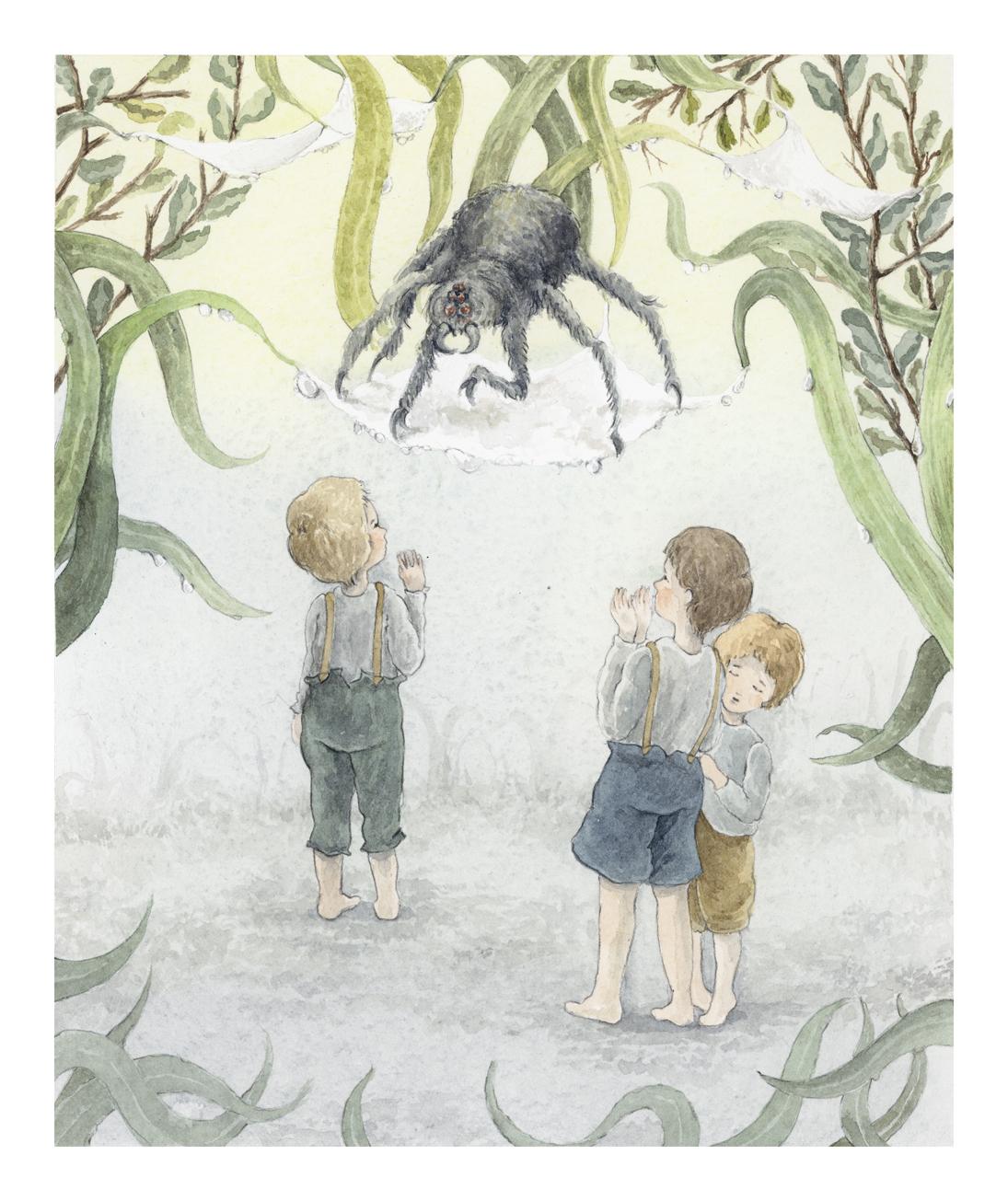 Spider_1_web.jpg