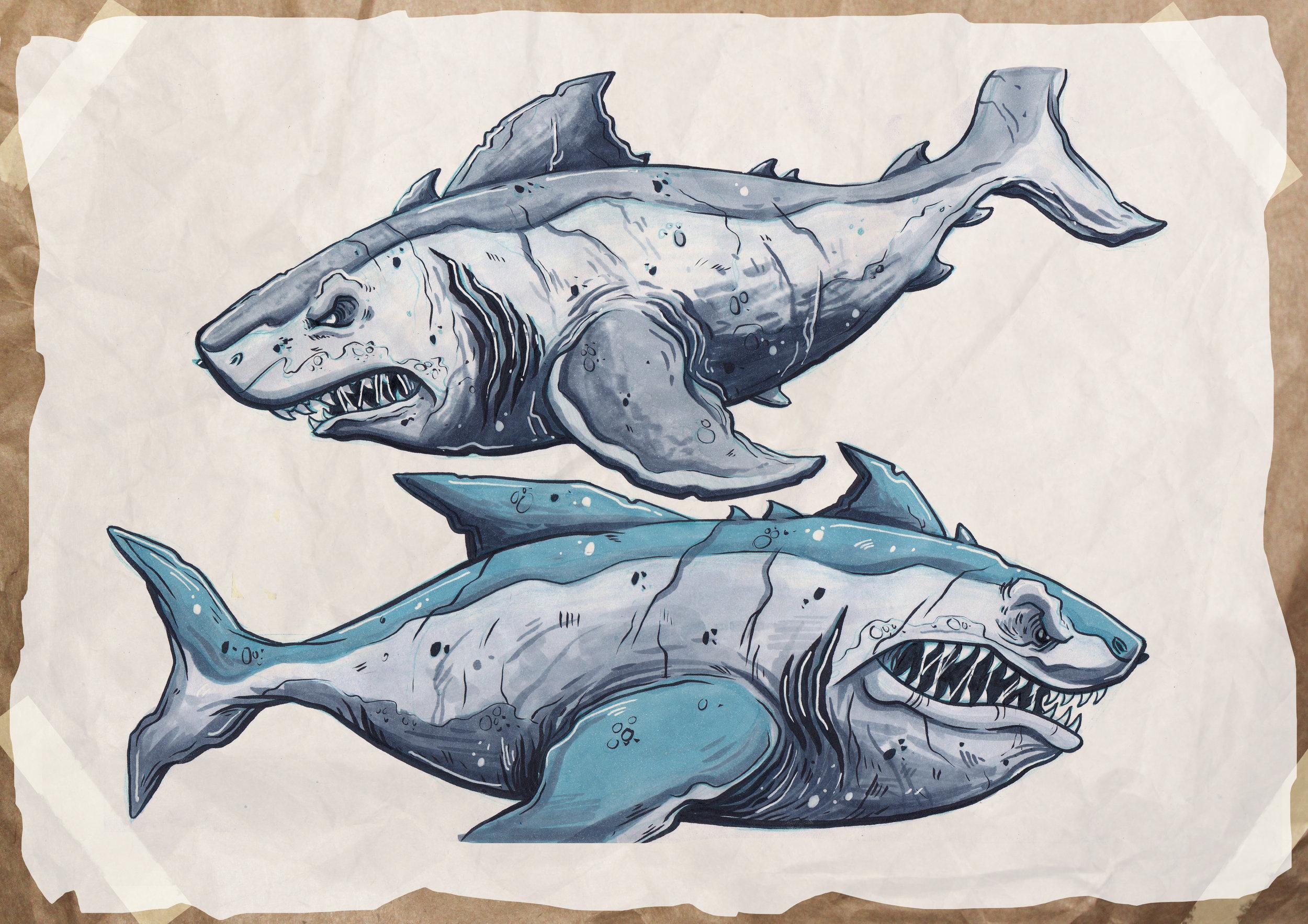 marker_sharks1.jpg