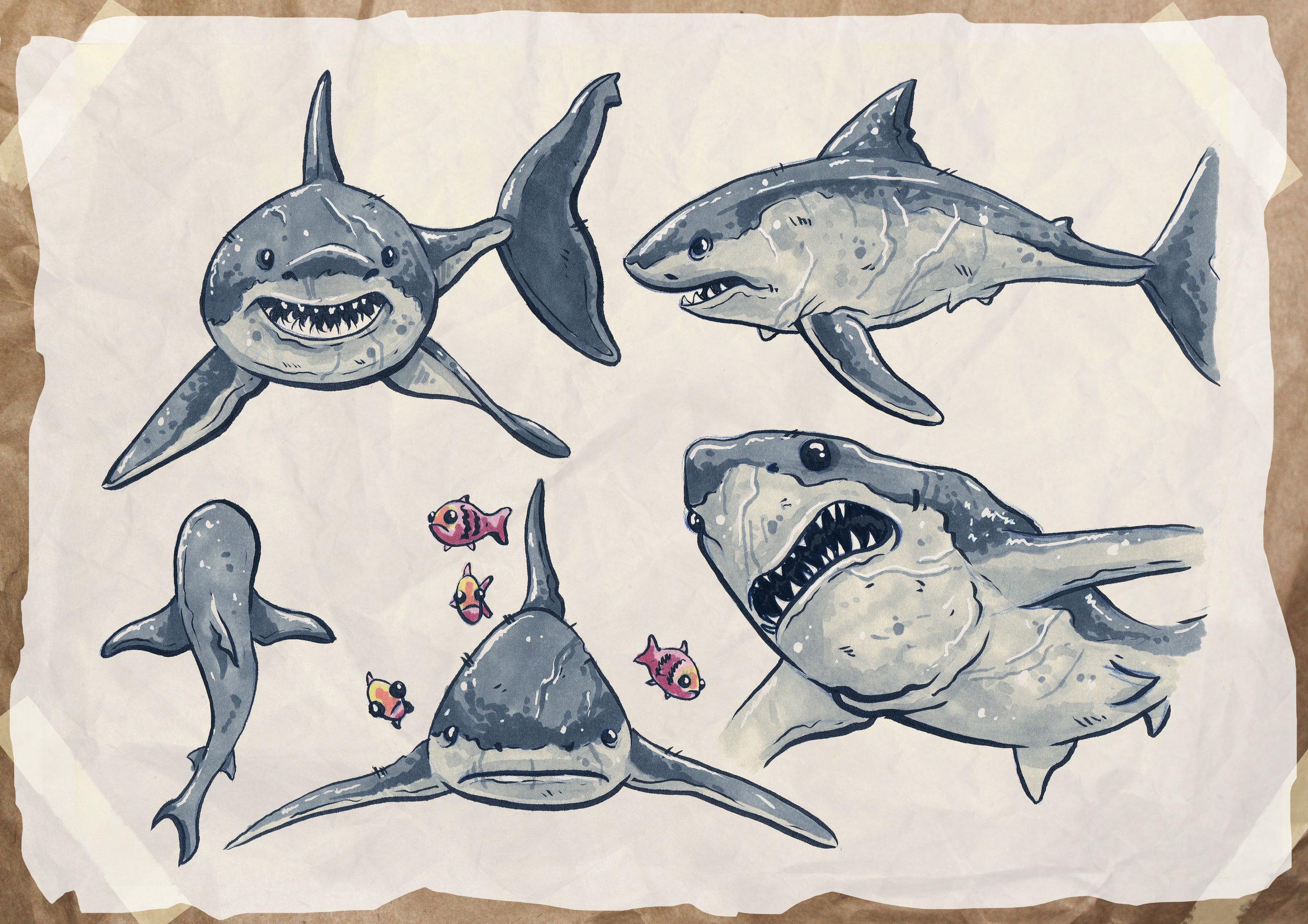 marker_sharks3.jpg