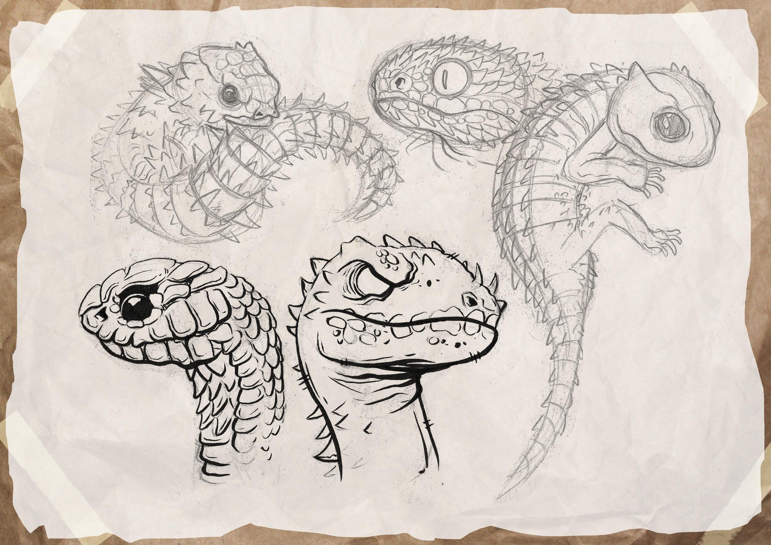 lizards_sketches.jpg
