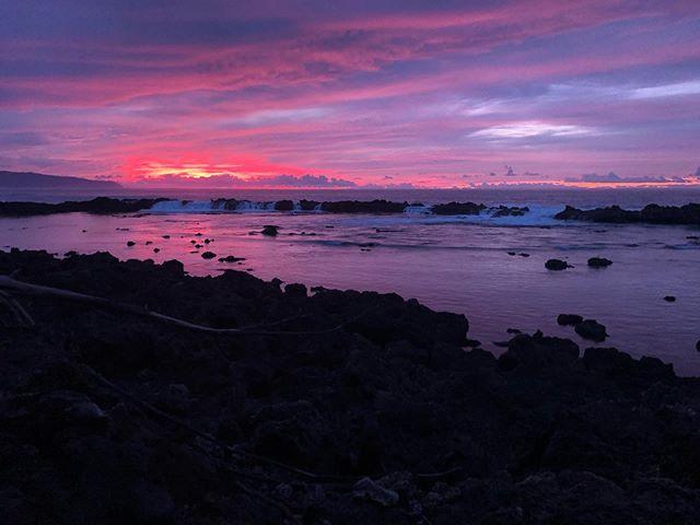 Oahu highlights!