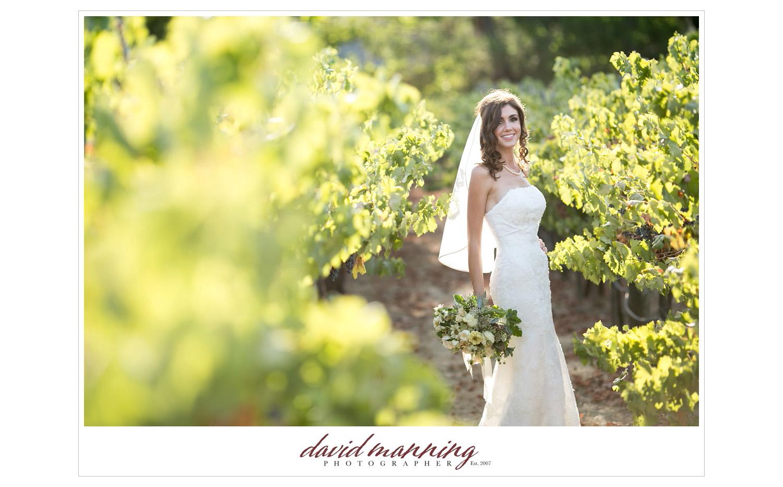 Ramona-Winery-San-Diego-Wedding-Photos-David-Manning-130906-0008.jpg
