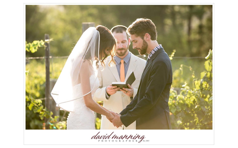 Ramona-Winery-San-Diego-Wedding-Photos-David-Manning-130906-0013.jpg