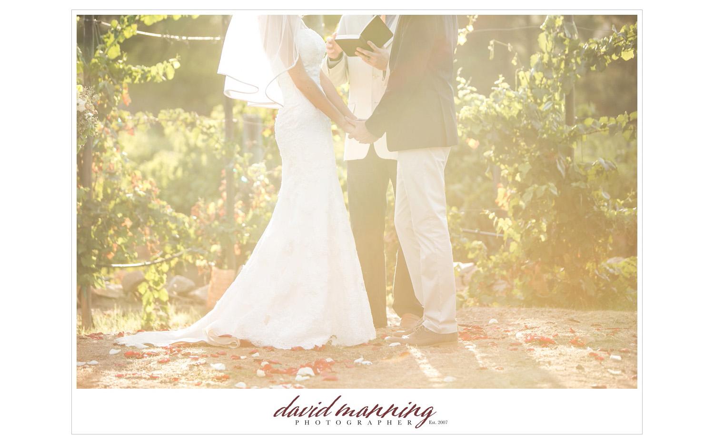 Ramona-Winery-San-Diego-Wedding-Photos-David-Manning-130906-0015.jpg