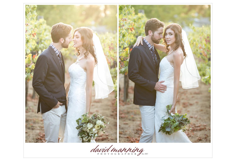 Ramona-Winery-San-Diego-Wedding-Photos-David-Manning-130906-0019.jpg