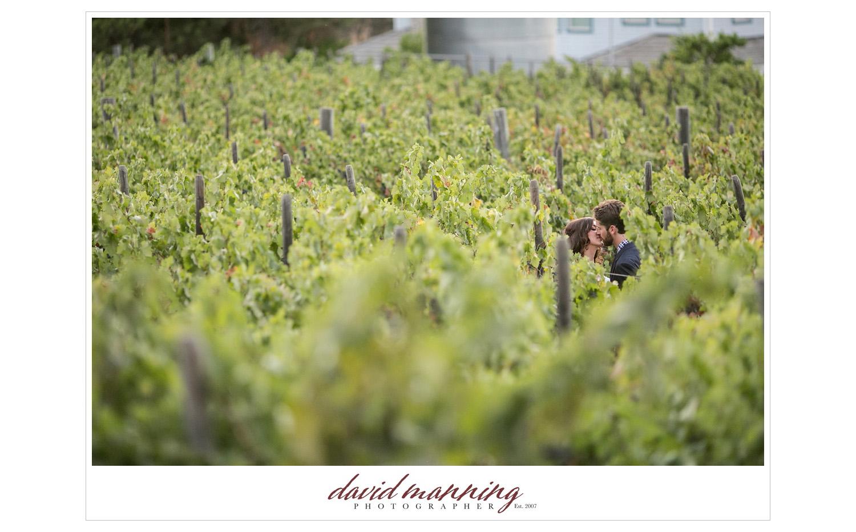 Ramona-Winery-San-Diego-Wedding-Photos-David-Manning-130906-0029.jpg