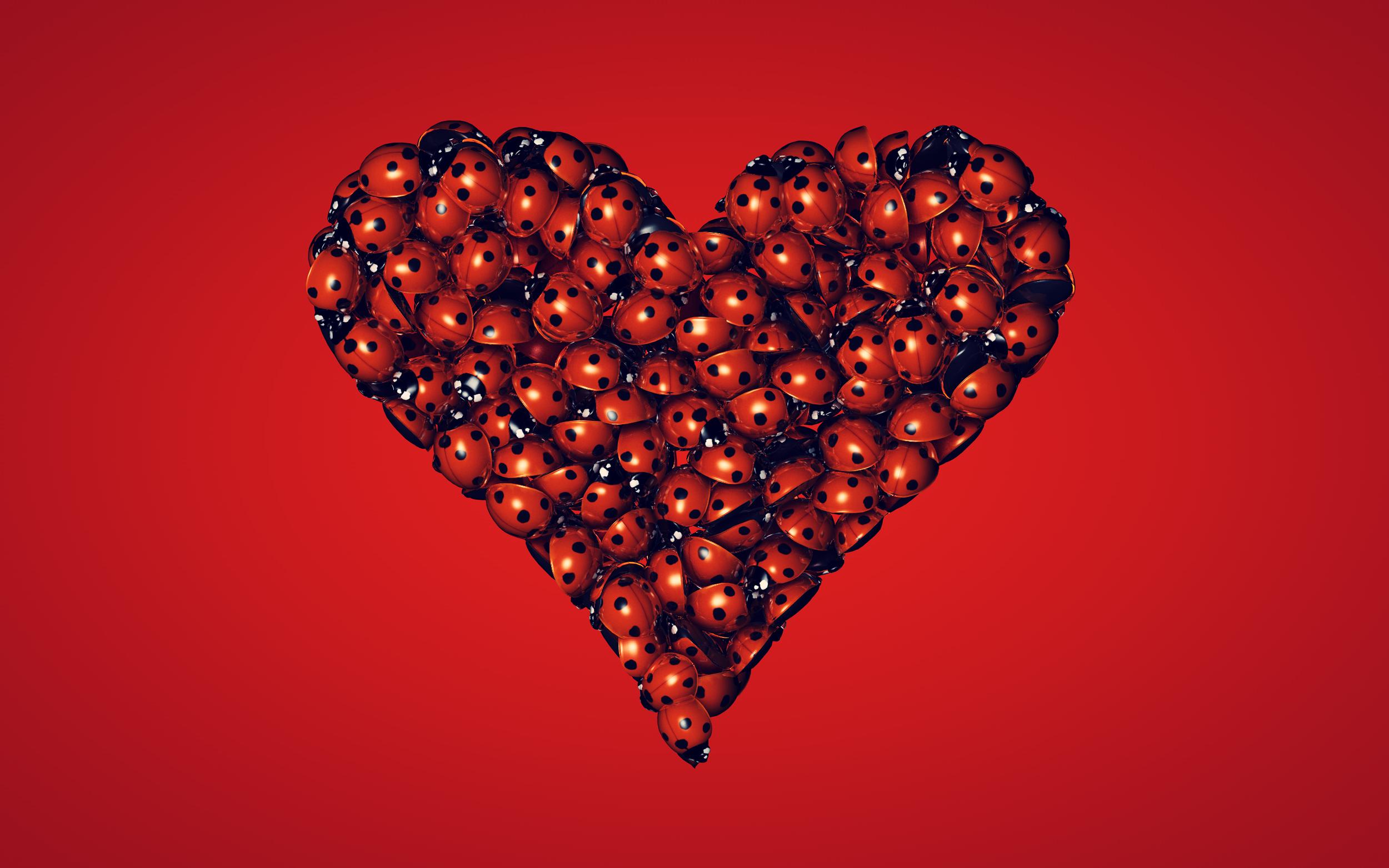 20120924_Ladybug_Heart.jpg
