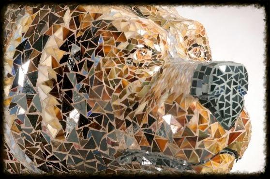 bear_head-558x369 copy.jpg