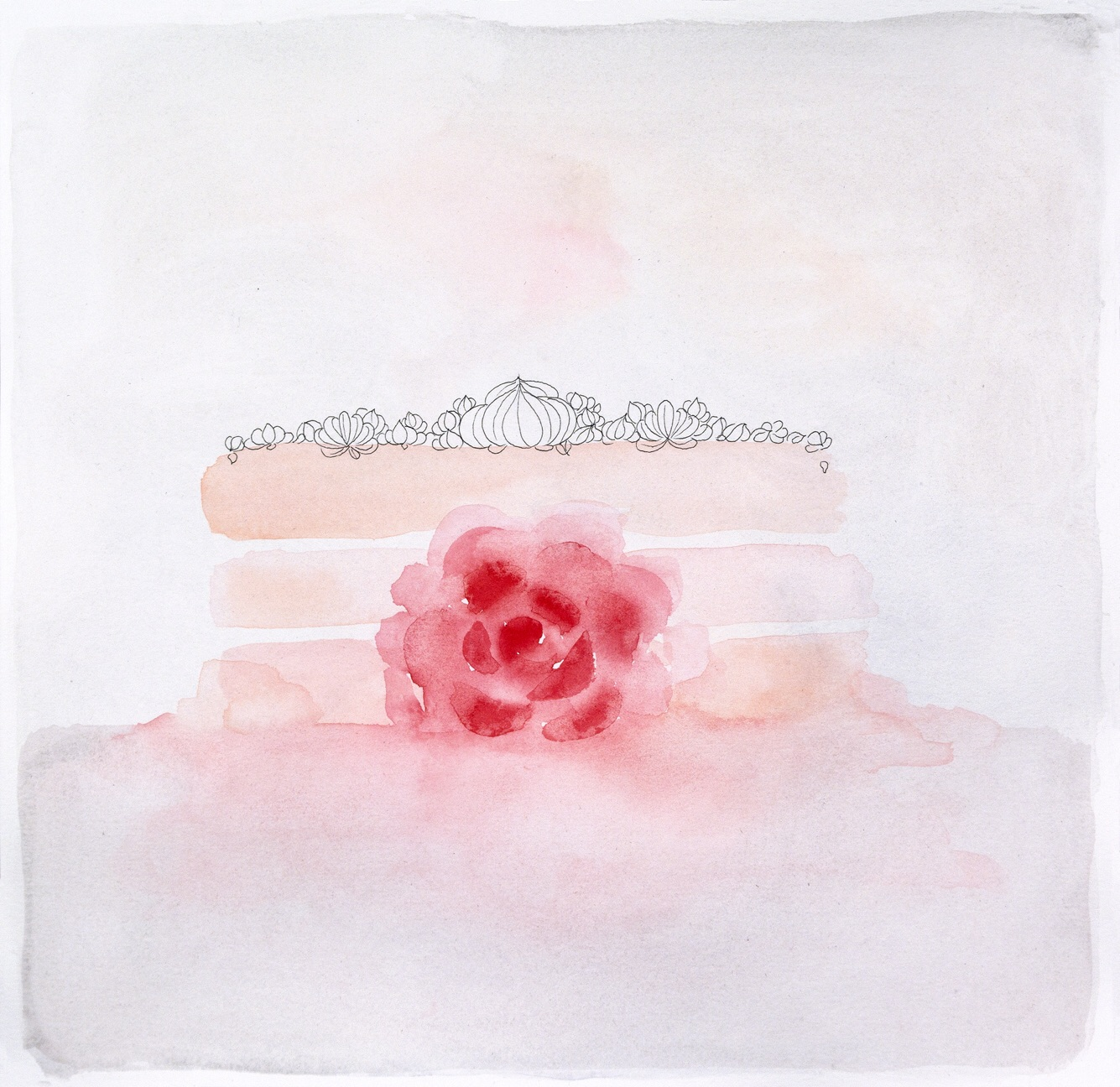 "where did the romance go ? (cake drawings),""rose"""