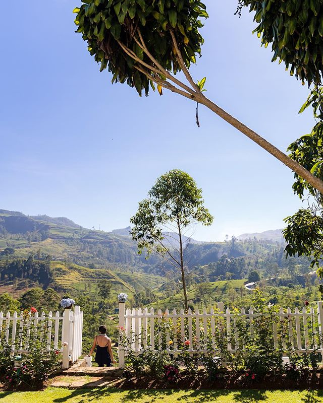 Views for days in tea country  photo: @brianleahyphoto #MarryMeinSriLanka #planthis ⠀⠀⠀⠀⠀⠀⠀⠀⠀ ⠀⠀⠀⠀⠀⠀⠀⠀⠀⠀⠀ .⠀⠀⠀⠀⠀⠀⠀⠀⠀⠀⠀⠀⠀⠀⠀⠀⠀⠀ .⠀⠀⠀⠀⠀⠀⠀⠀⠀⠀⠀⠀⠀⠀⠀⠀⠀⠀ .⠀⠀⠀⠀⠀⠀⠀⠀⠀⠀⠀⠀⠀⠀⠀⠀⠀⠀ .⠀⠀⠀⠀⠀⠀⠀⠀⠀⠀⠀⠀⠀⠀⠀⠀⠀⠀ . ⠀⠀⠀⠀⠀⠀⠀⠀⠀⠀⠀⠀⠀⠀⠀⠀⠀ #destinationwedding #srilankaweddings #travelsrilanka #weddingplanner #weddingplanning #weddingdestination #srilankatravel #luxuryweddings #srilankadaily #cntraveler #srilankatrip #visitsrilanka #exploresrilanka #passionpassport #tropicaldestinations #srilankatourism #beautifulsrilanka #luxuryvacation #tropicalisland #tropicalviews