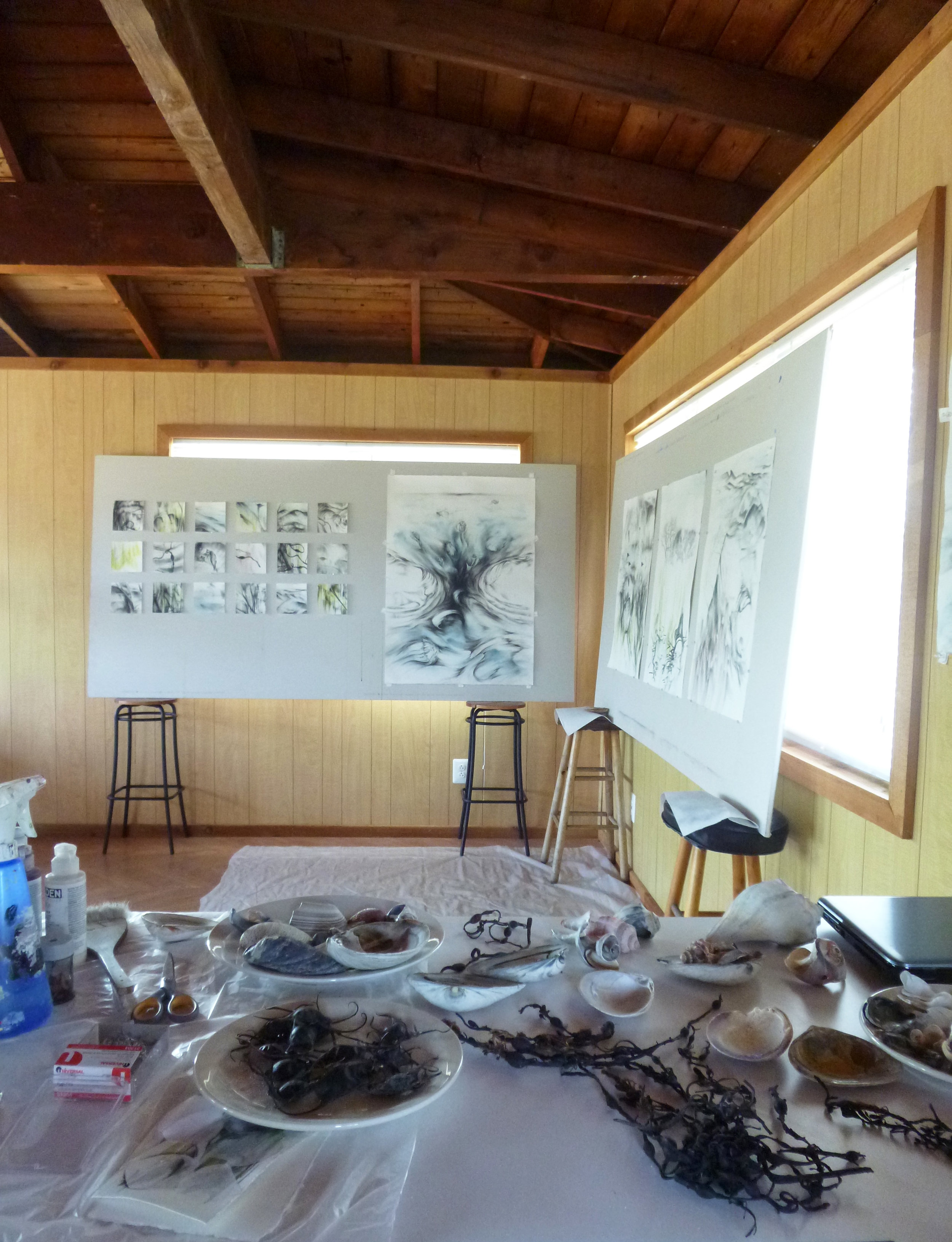 FINS Studio