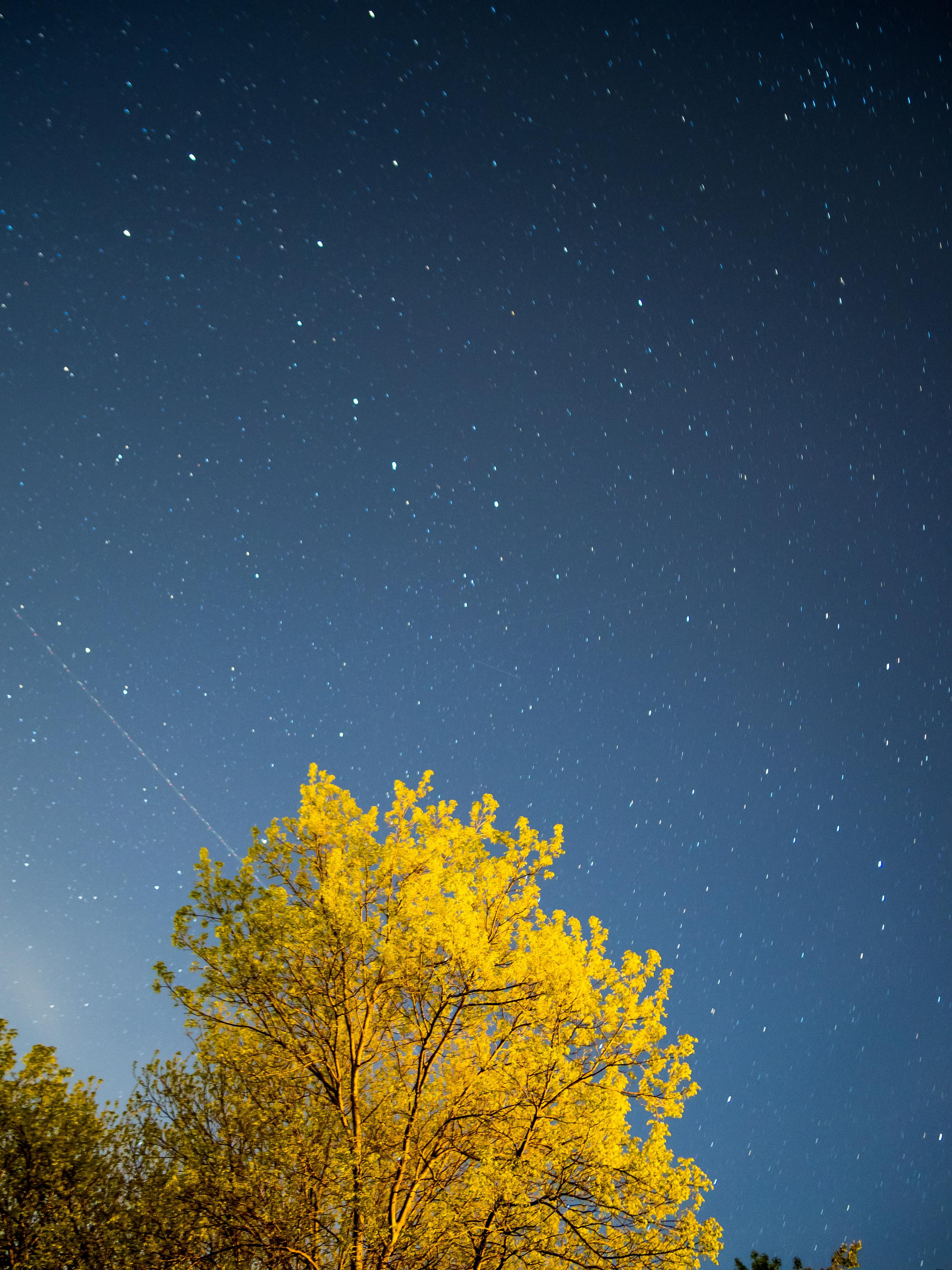 Night Skye.jpg