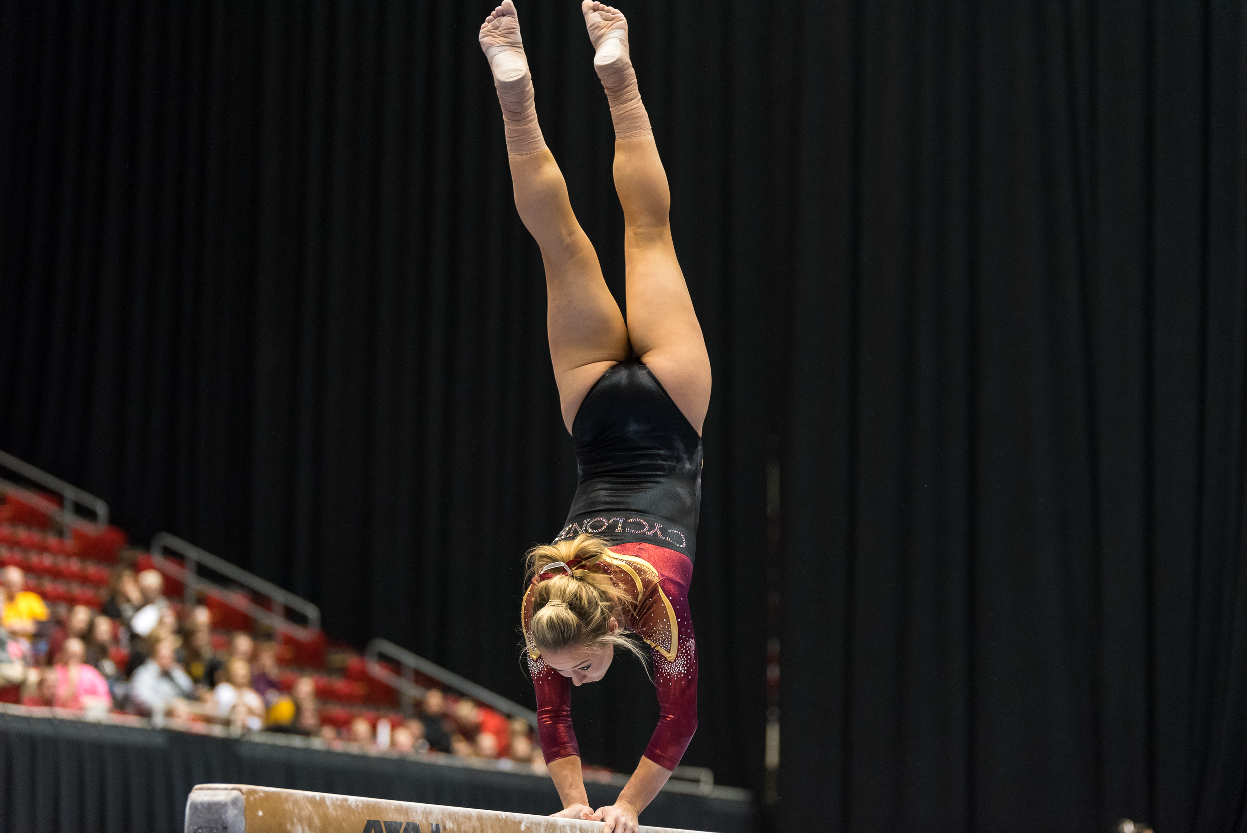 ISU Gymnastics vs Iowa-42.jpg