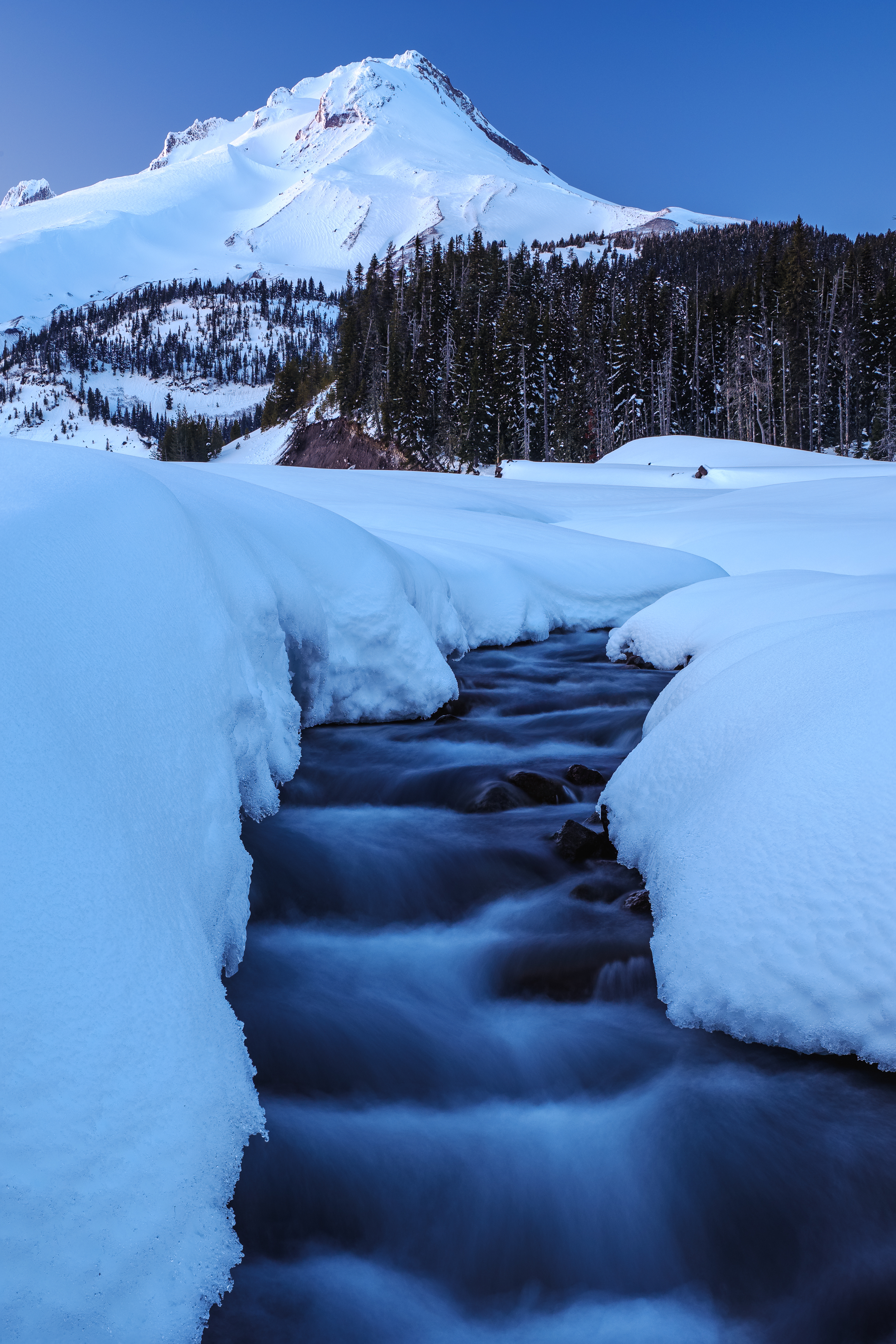 Mount Hood in Snow
