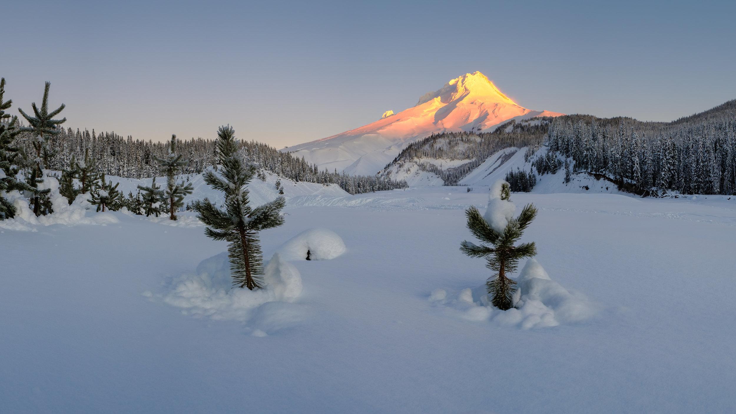 christmas mt hood snow