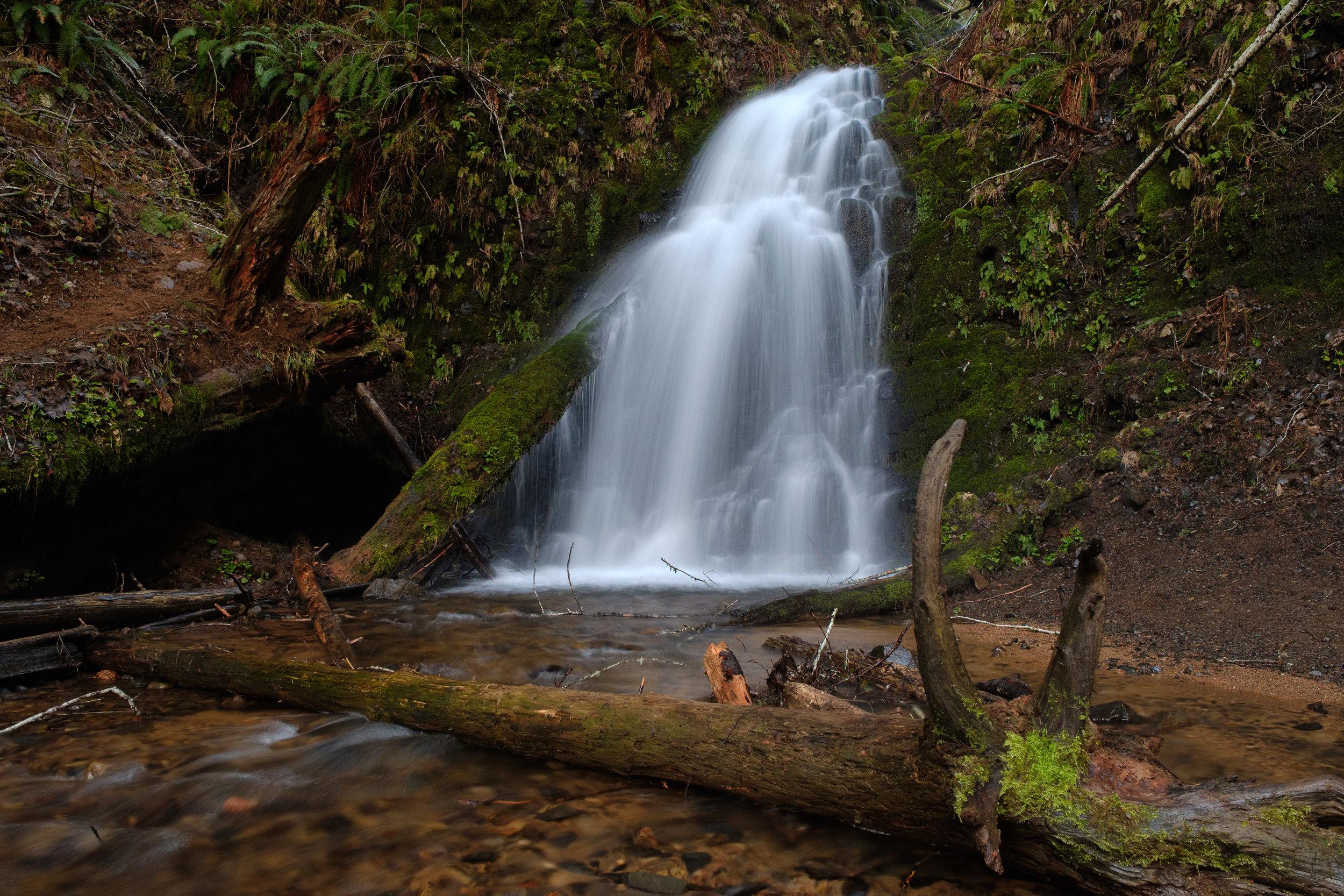 waterfall deadfall tree river