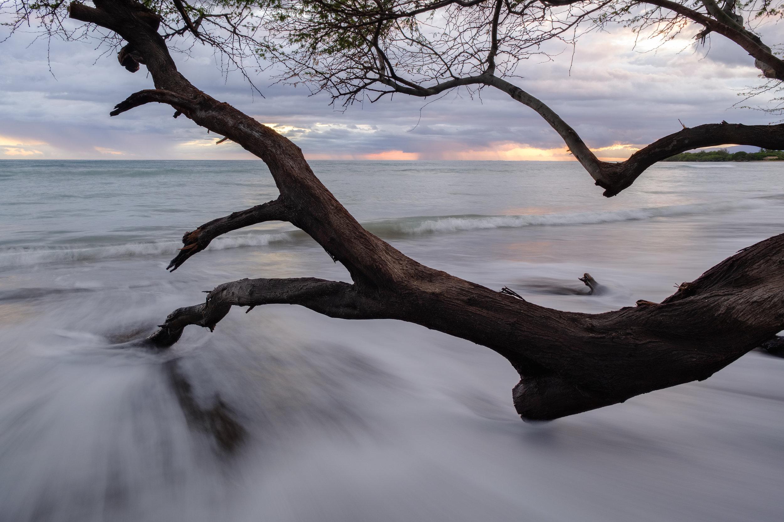 Hawaii (online)-1.jpg