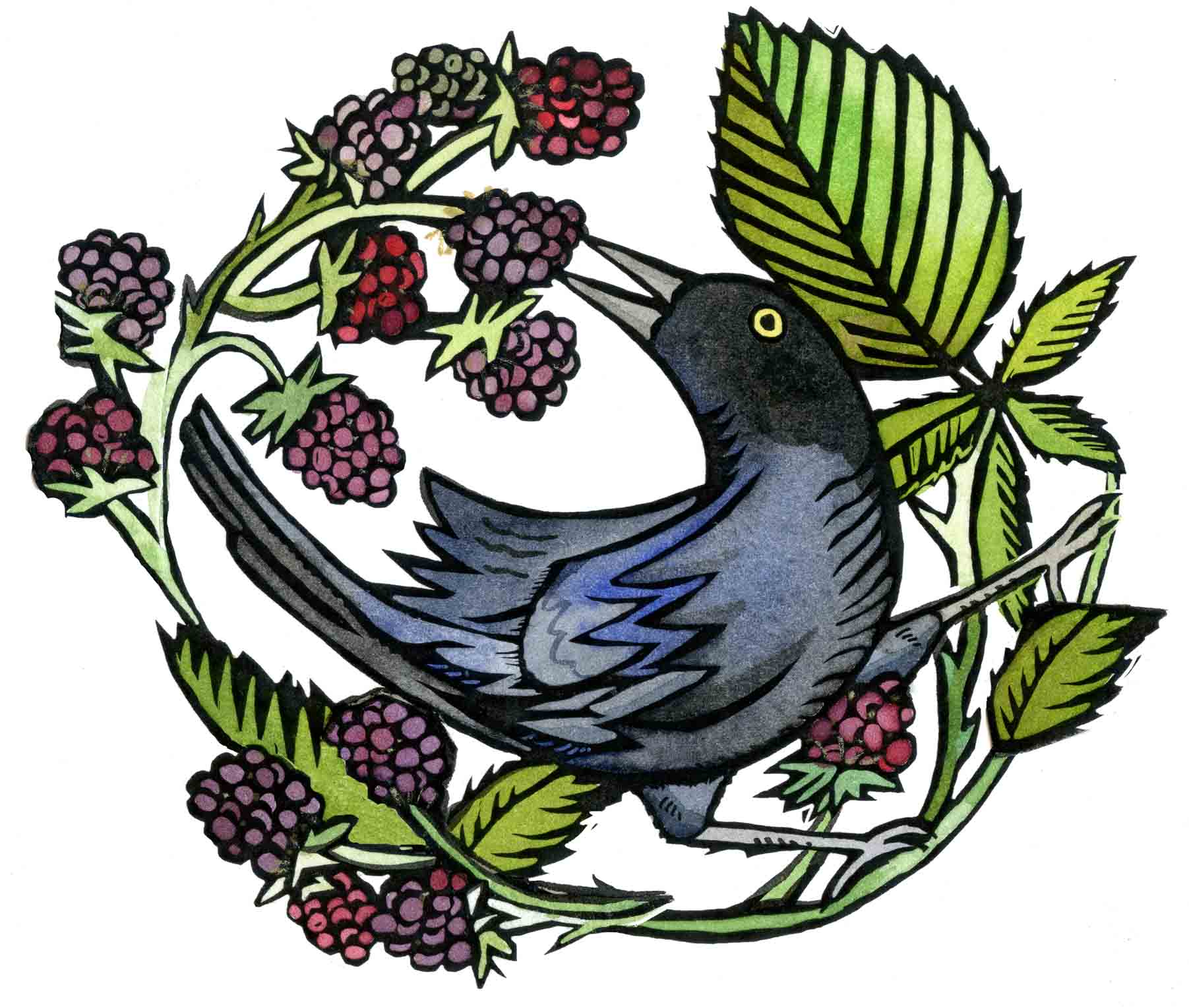 black bird and berries copy.jpg