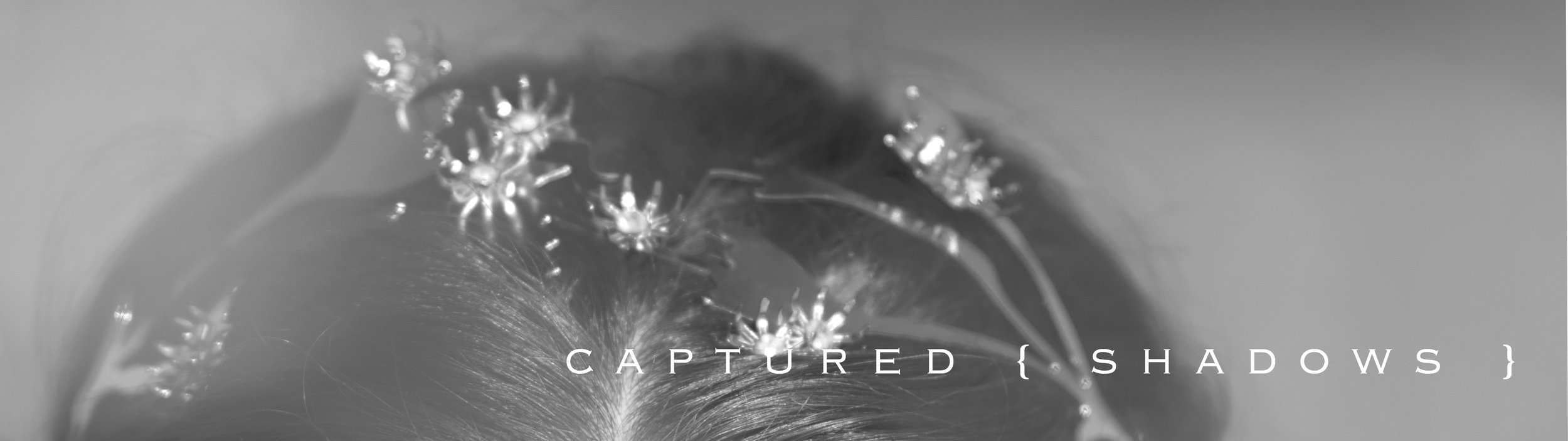 coming to life. wild roots plucked from my morning stroll have been reborn into sleek, simplistic, modern day crowns. what started as a single shadow trace was then digitized and applied to modern materials - bringing you nothing but completely authentic detail.