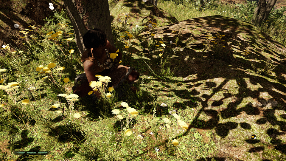 Far Cry® Primal_20171008134222_2.png