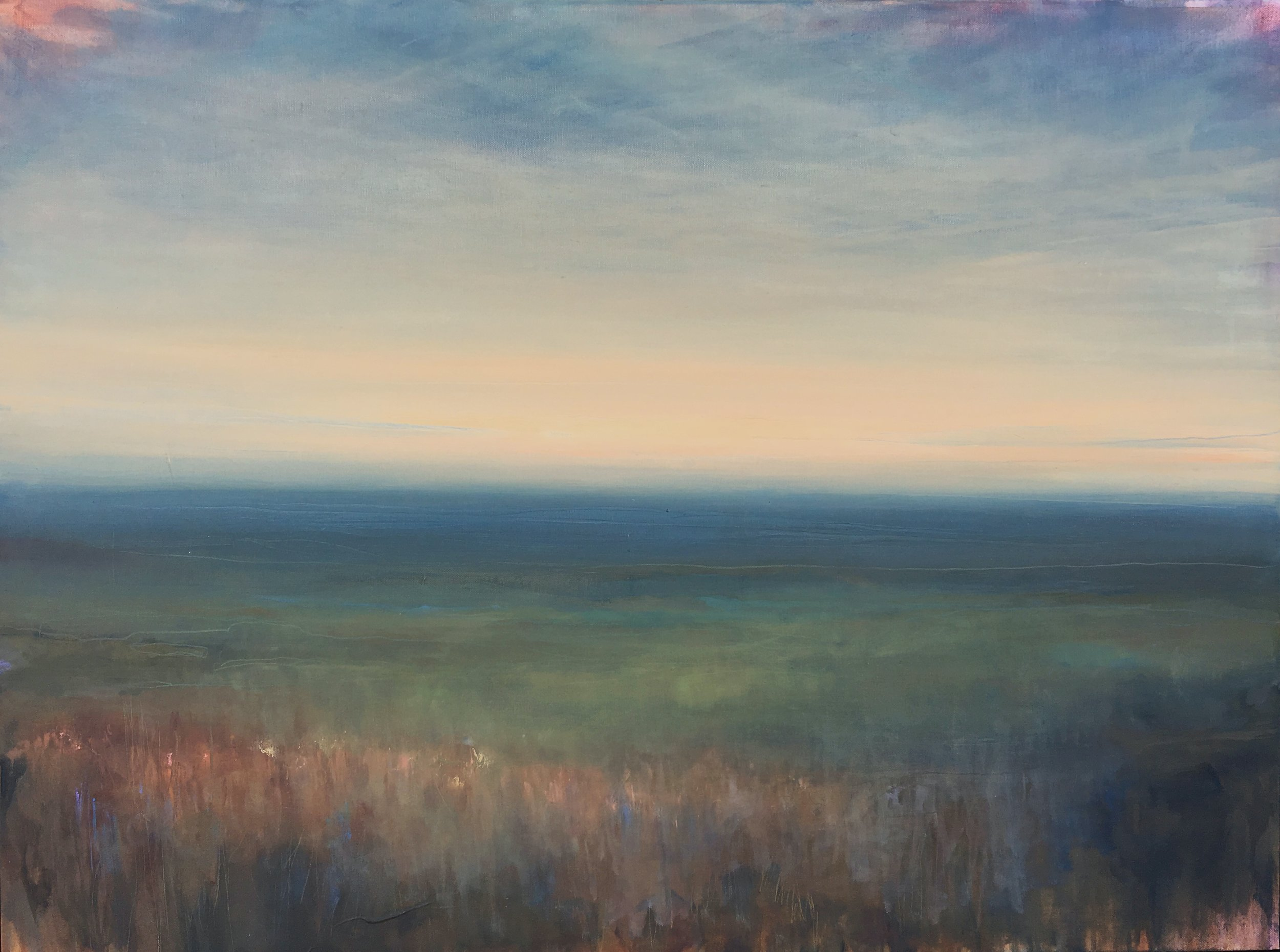 "Blue Stem , Oil on canvas, 30 x 40"""