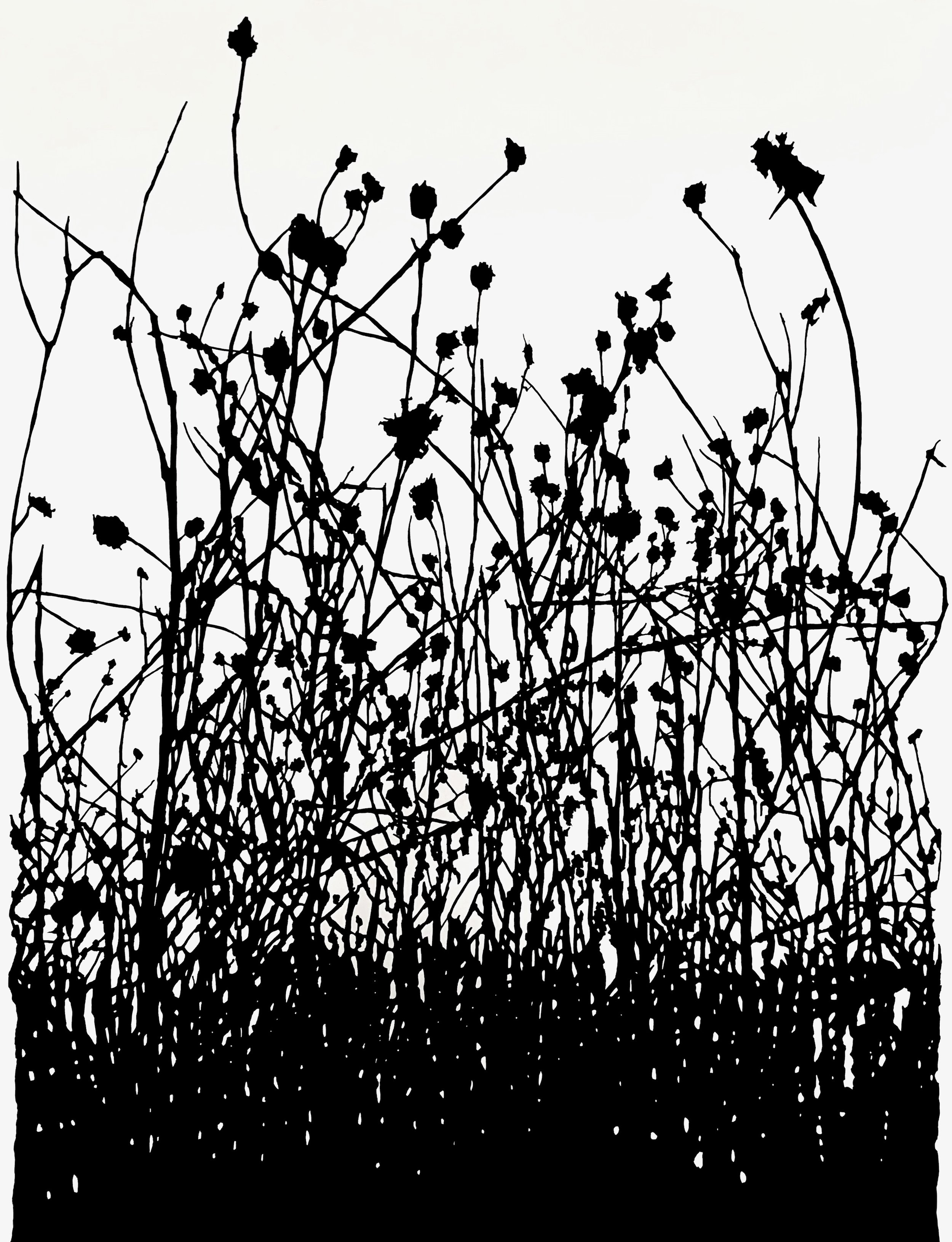 Winter, Dead Prairie , ink on paper, 50 x 38""