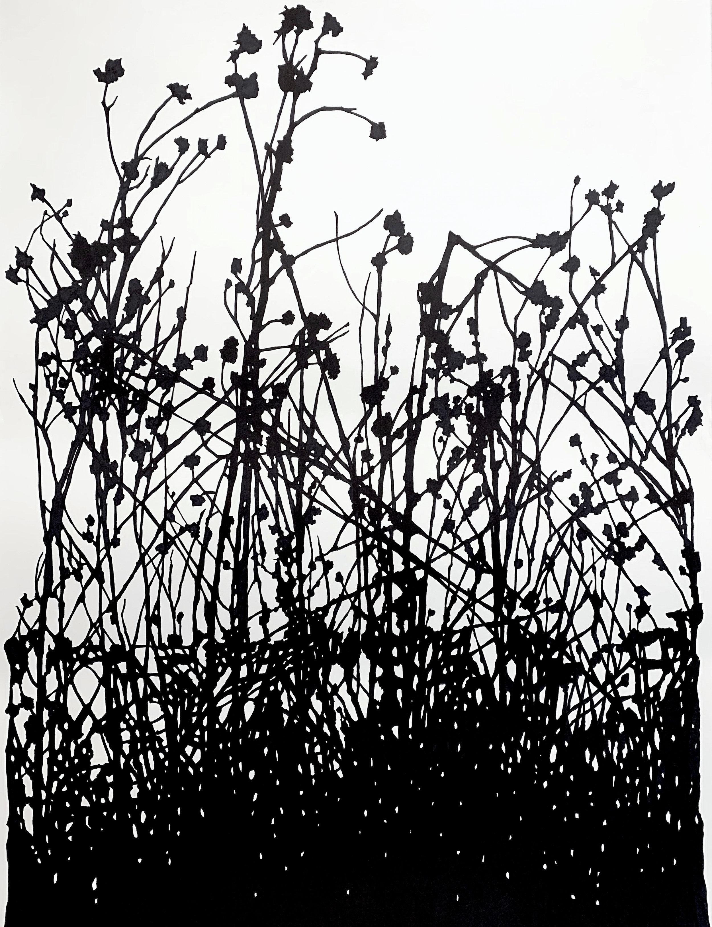 "Winter, Dead Prairie (2) , ink on paper, 50 x 38"""