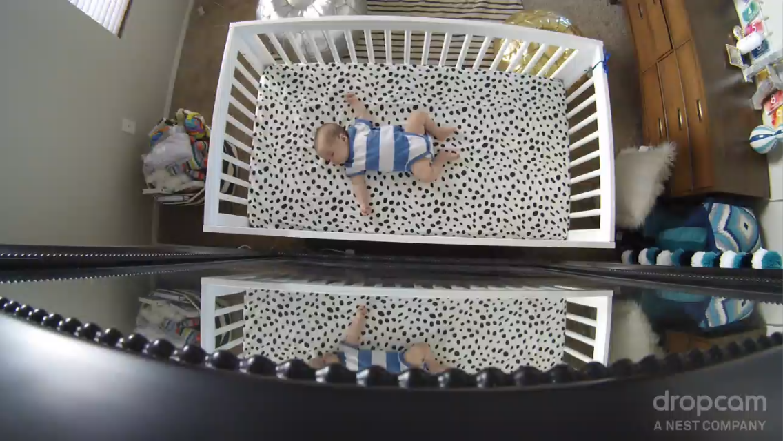 Dropcam Baby Monitor Review | Momma Society | The Community of Modern Moms