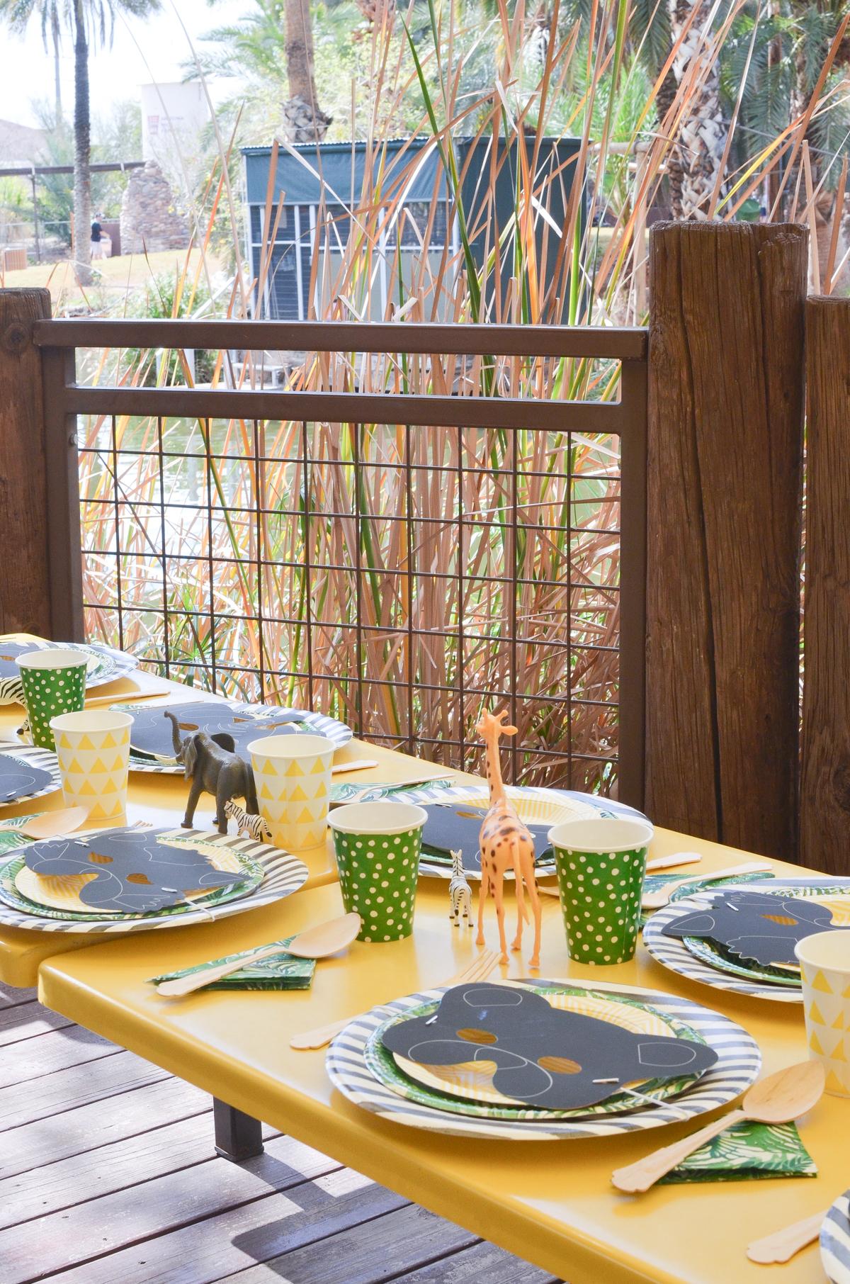 Phoenix Zoo Birthday Party | Zoo Party | Young Wild & Three | Safari Party