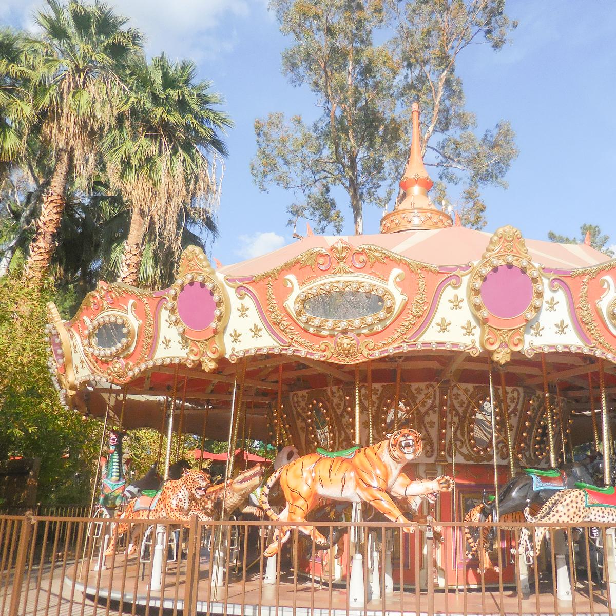 Phoenix Zoo Animal Birthday Party Safari