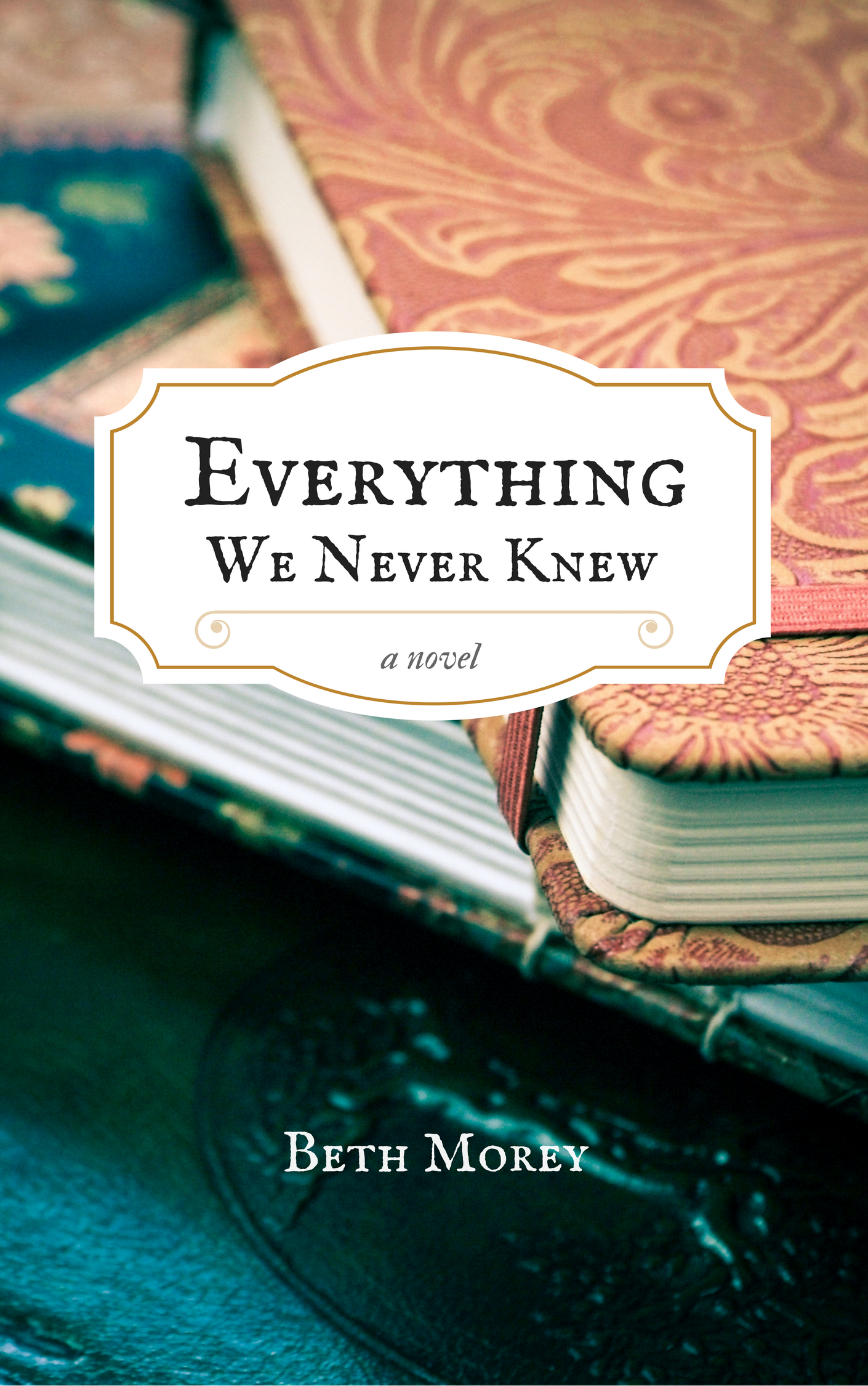 everything-we-never-knew-book-morey