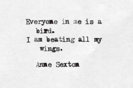 bird-poem-anne-sexton.jpg