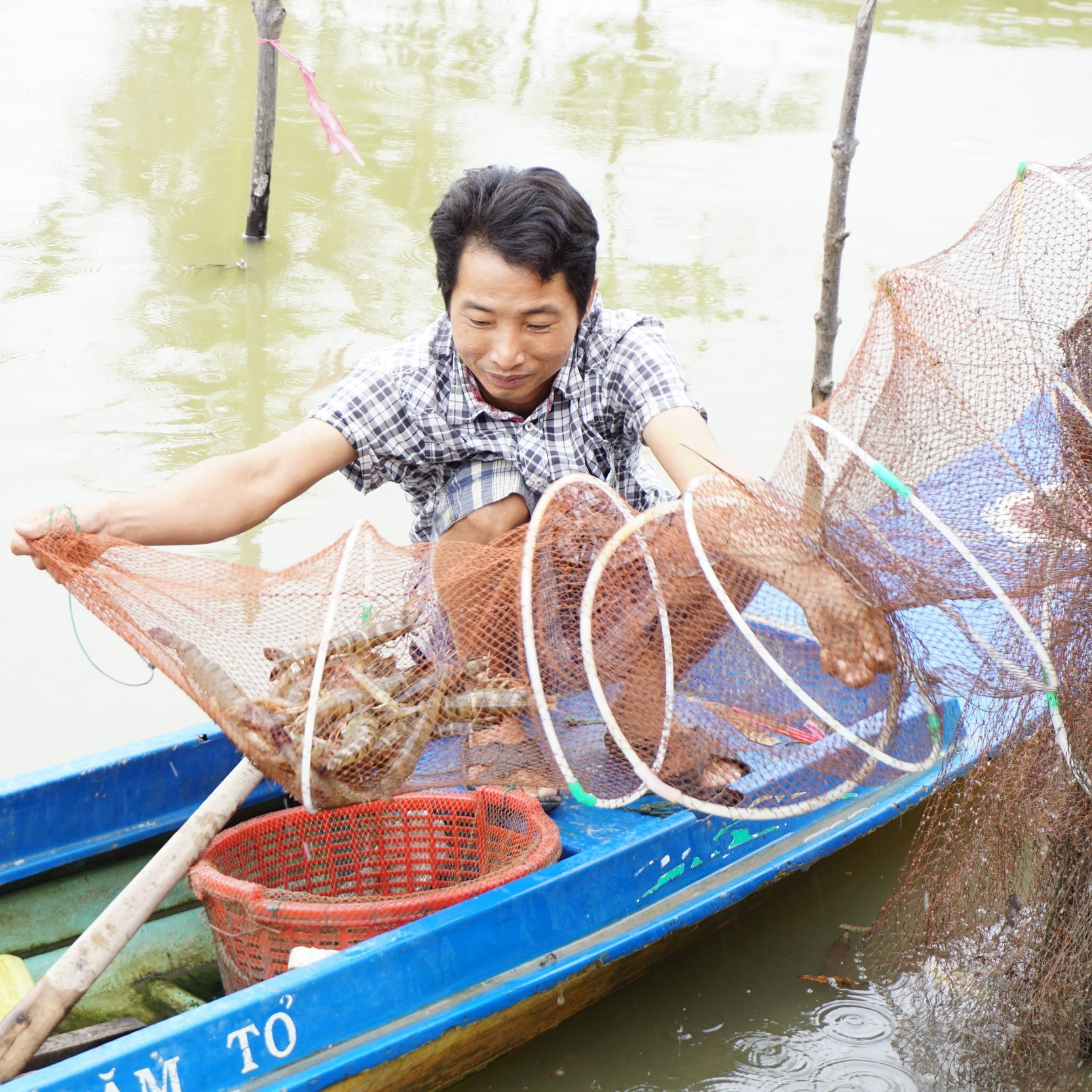 Asian_shrimp_farmer_sustainable_seafood.jpg
