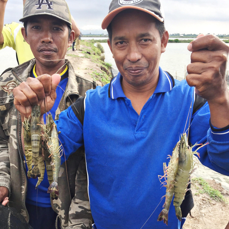 Asian_shrimp_farmers_sustainable_seafood.jpg