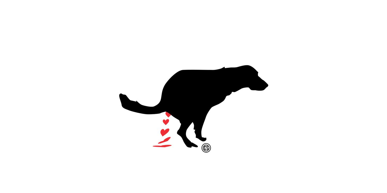 pistola poop dog.jpg