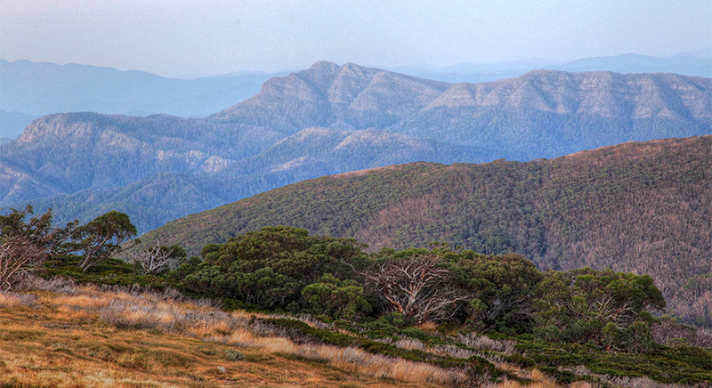 Mt Cobbler, Victorian High Country