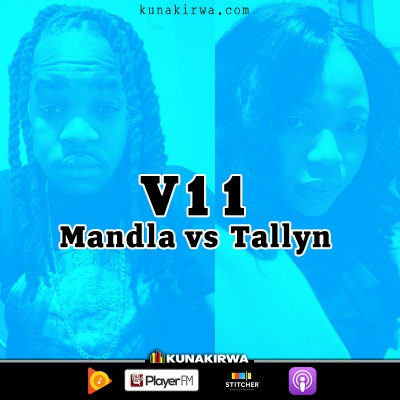 V11-Zimbabwe-ConCourt-Mandla-vs-Tallyn-2018.jpg