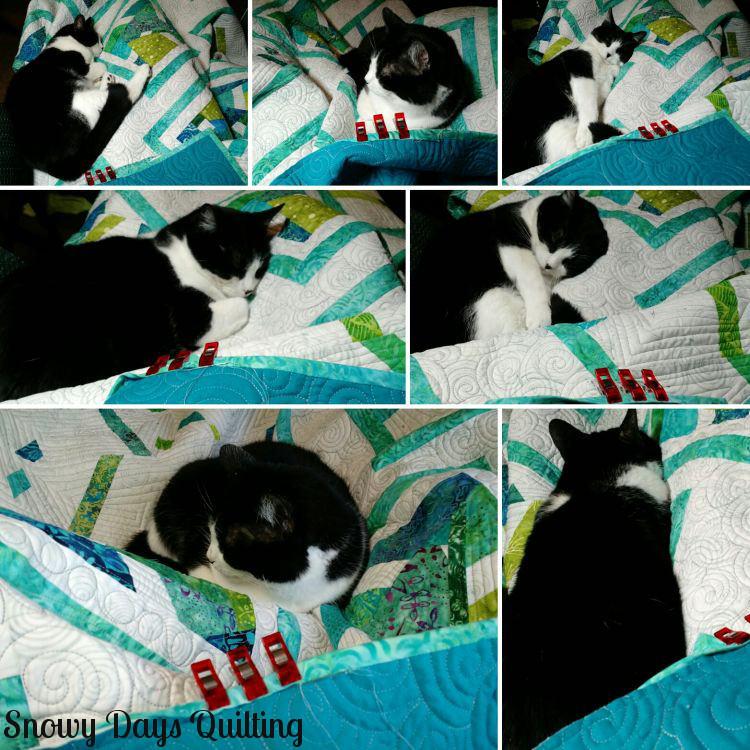 hand binding quilt cat
