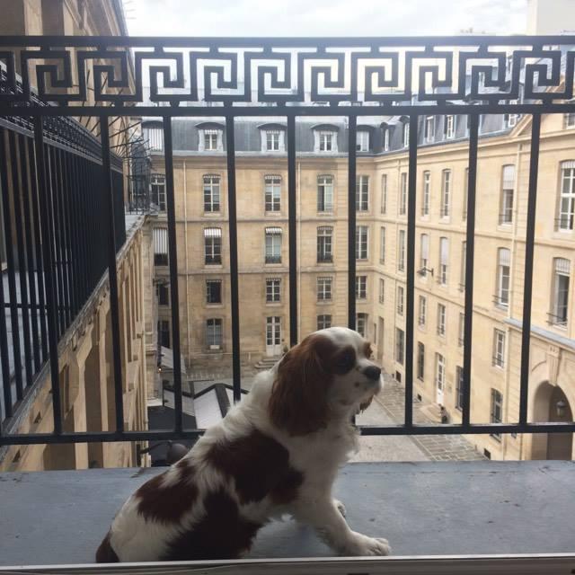 Chambre avec balcon et VUE!