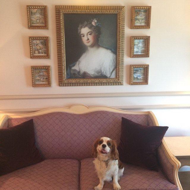 Décoré avec soin et respect pour le plus grand bonheur des amoureux du Beau, Oscar se prépare doucement pour aller dîner.