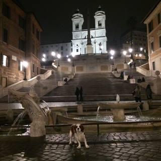 Situé a 5 mns à pattes de l'hôtel, Oscar profite d'une balade nocturne sur une  place d'Espagne  QUASIMENT vide :)